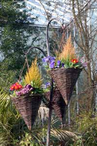 Floral Display Singleton Botanical Gdns.jpg